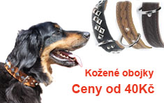 Kožený obojek pro psy