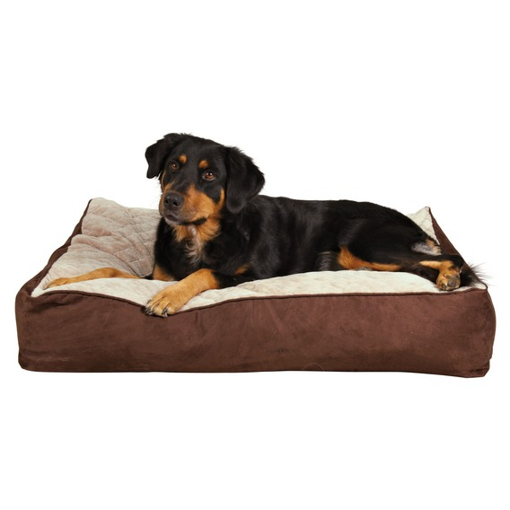 http://www.4animals.cz/inshop/Catalogue/Products/velky/brian_1.jpg