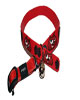 Rogz obojek Elasto Cat Collar Jerry Red